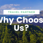 Why Gomybos is Your Perfect Online Travel Partner?